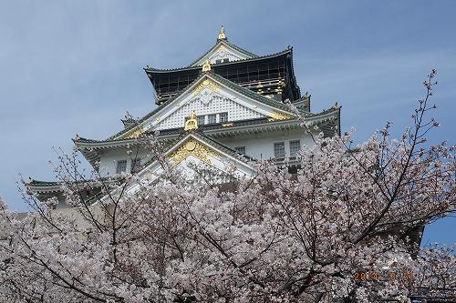 140331 天守閣と桜.jpg