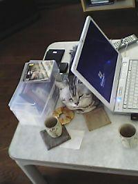トムとパソコン