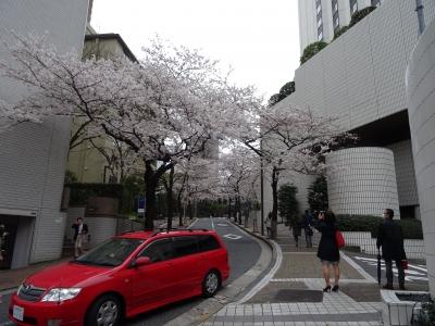 2015-03-29 13.43.38.jpg