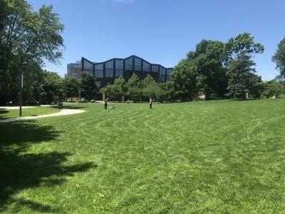 Oak Park Public Library.jpg