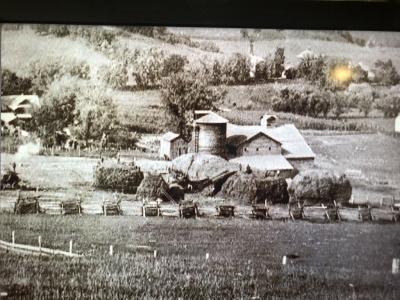 ロイド家の農場.jpg