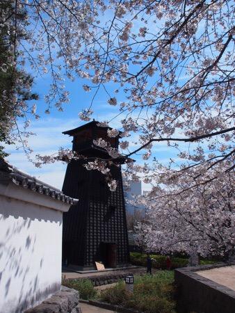 新川 火の見櫓 新川火の見櫓 桜 江戸川区