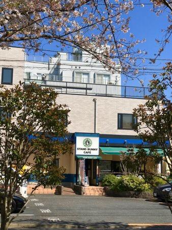 スタバ スターバックス STARBACKS うさぎ スタバニ スタンドバニー カフェ江戸川区 喫茶店 STAND BUNNY CAFE