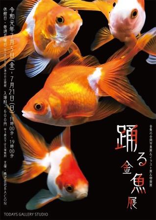 踊る金魚展 金魚 イベント