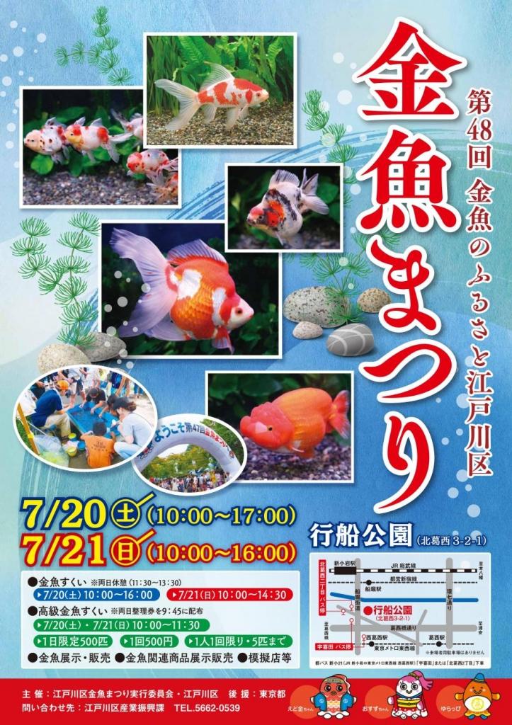 金魚 金魚まつり 江戸川区 江戸川区金魚まつり 金魚イベント