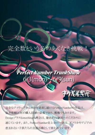 PerfectNumber-TrunkShow(BLOG).jpg
