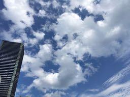 広島駅周辺 nalblog.com なんとかなる。なんとかする。2017年7月17日(月)海の日 健康記録 2017年7月17日(月)海の日 晴れ・曇り  歩数:16,039歩 歩いた距離:10.1km 睡眠時間:5時間48分 マインドフル時間:5分   前日は日付が変わる頃に就寝、睡眠時間はいつもより少なめです。この日は広島で開かれているケベック映画祭最終日。広島中央図書館に併設されている映像文化ライブラリーへ映画を観に行きました。カナダのケベック州出身の監督作品5作品が5日間に渡って上映され、そのうち2作品がずっと観たいなぁと思っていたグザヴィエ・ドランの作品でした。2014年発表の「Mommy」を観た時もですが、色やカメラワークなどの表現方法がとても印象的で、「そのまま」な感じがいいなぁと感じました。  この日は夕方から撮影の予定だったので、映画鑑賞後、図書館の食堂でカツ丼を食べて図書館で本を借り、それから街を散策することにしました。とりあえず広島城〜広島駅を歩いてみました。縮景園から見える川沿いを歩いてみようと道を探しましたが、反対側しか歩けないようで、断念。橋を渡って広島駅の南口の川沿いを少し歩きました。お昼を回って一番暑い時間だったので、くじけそうになりましたが、途中コンビニに寄ったり木陰で休んだりして暑さをしのぎました。蔦屋家電の入り口から噴き出してくる乾いた冷気にも2度救われました。街の暑さは鉄板の上を歩いているようにグツグツと体内に熱が溜まっていくような暑さで、自然の暑さとはまた違うなーとお上りさんは思うのでした。  広島駅からバスに乗って横川まで移動。コンビニであんぱん・クッキー・豆乳を購入してそのまま河原に直行しました。日が落ち始めるまでまだ2時間ほどあったので、風の通る橋の下で休憩をとりました。川辺で涼む人、バーベキューをする家族連れ、芝生でフリスビーを楽しむ学生、ランニングをする人たち。河原でもそれぞれの時間が流れていました。  この日はビデオ中心に撮影しました。DSLRの動画機能を使っての撮影です。まだ全然練習段階なのですが、作品も出し始めたので数をこなして技を磨いて行きたいと思います。  というわけで、10km近くをバックパックを背負って歩き肌もすっかり小麦色。お出かけ用の革靴を履いての歩きでしかも靴下が薄かったため大きなマメができましたが、新しいものを見て感情を揺さぶられ、刺激的で充実した一日でした。