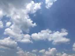 nalblog.com なんとかなる。なんとかする。2017年7月20日(木)健康記録 2017年7月20日(木)晴れ  歩数:2,264歩 歩いた距離:1.1km 睡眠時間:6時間47分 マインドフル時間:3分  中国地方、梅雨明け宣言ありましたね。この日は全身がだるく腕が痺れがひどかったので午後から休みにしてござマットの上に寝転がりひたすらゴロゴロと昼寝をしました。 時期的なものなのか、疲れが出たのか、時折どうにもならない状態がやってきます。どうにもならないので時間に身を任せなすがまままに眠りこけました。夕方には回復、日用品の買い物へ出かけ、夕食、ドラマ鑑賞の後ぬるめのお風呂に入って就寝。週末イベントの撮影があるので、それまでには復活できそうで良かったです。