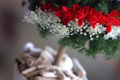 クリスマストピアリー