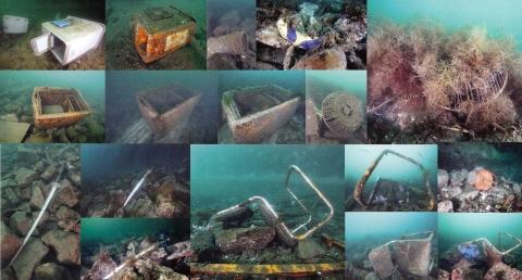 「ダンゴウオ 海の底から見た震災と再生」2