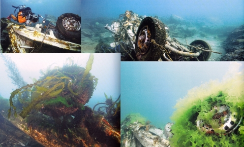 「ダンゴウオ 海の底から見た震災と再生」3