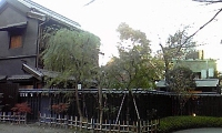 神田明神 宮元公園 (2).JPG
