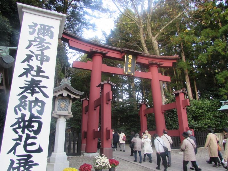 弥彦神社(彌彦神社)は新潟県西蒲原郡弥彦村にある