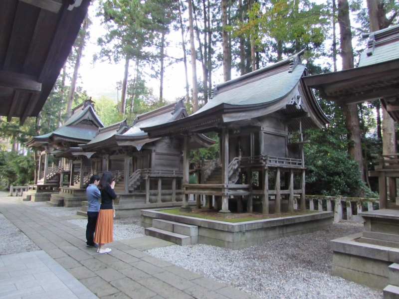 弥彦神社(彌彦神社)の摂社・末社