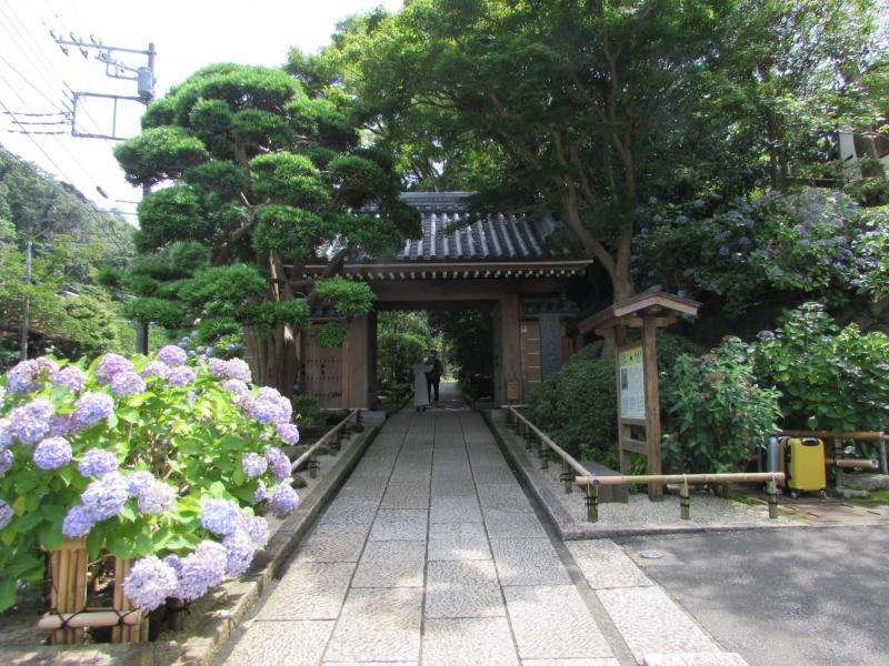 報国寺(HOUKOKUJI TAKEDERA)