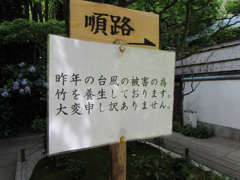 報国寺も台風の被害