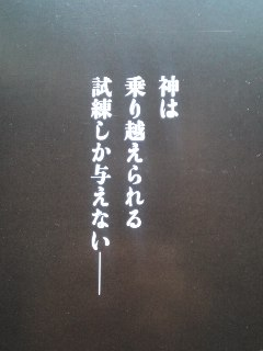 mini_110611_1119.jpg