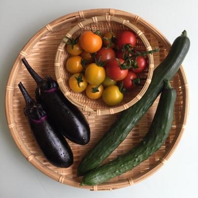 ミニトマト、茄子、きゅうり