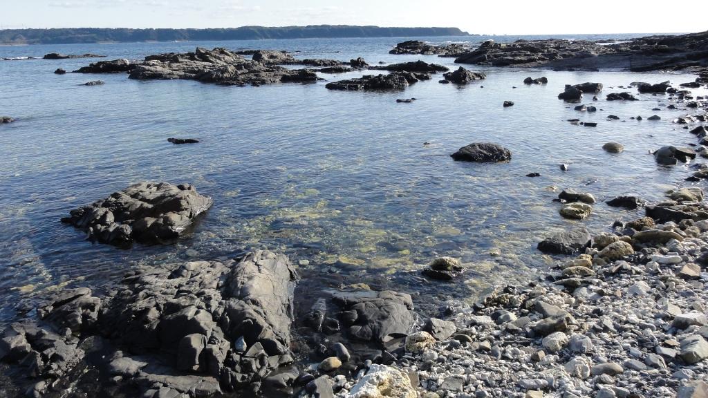 串本 海中公園 和歌山 珊瑚礁 観光
