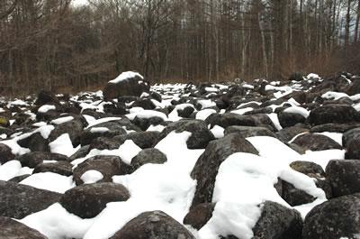 八ヶ岳の溶岩跡