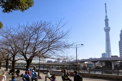 20150211東京の街を走ろう!コース試走012.JPG