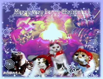 picoちゃんのクリスマスカード