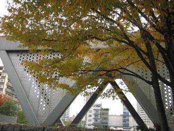 東京都現代美術館エントランス