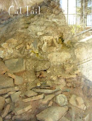 原爆当時の地層
