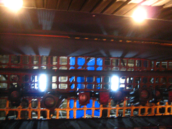 天井:ぶどう棚