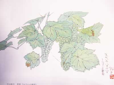 トルファンの葡萄