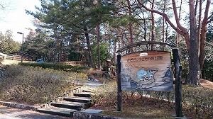 かざこし子どもの森公園