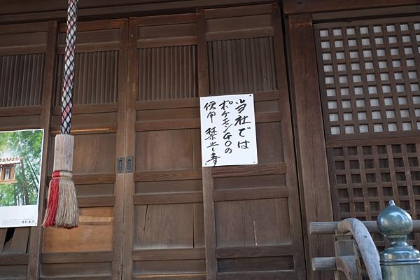 1608teramachi050.jpg