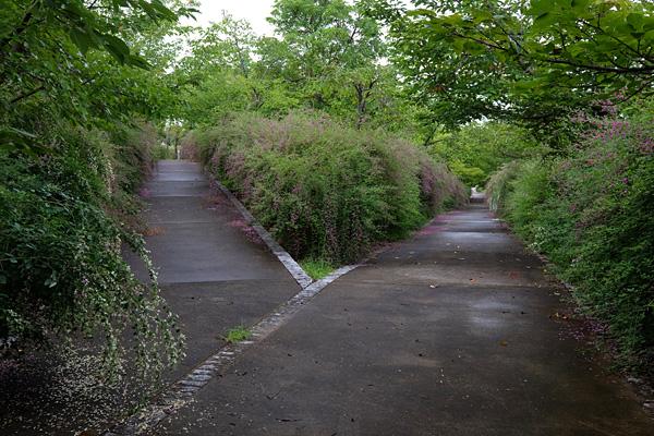 1609nishida006.jpg