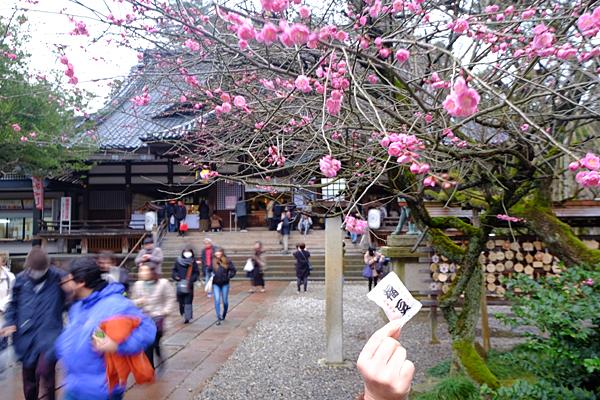 2002oyama001.jpg
