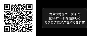 モブログ(ケータイ用ブログ)