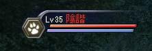 レベル35・・・