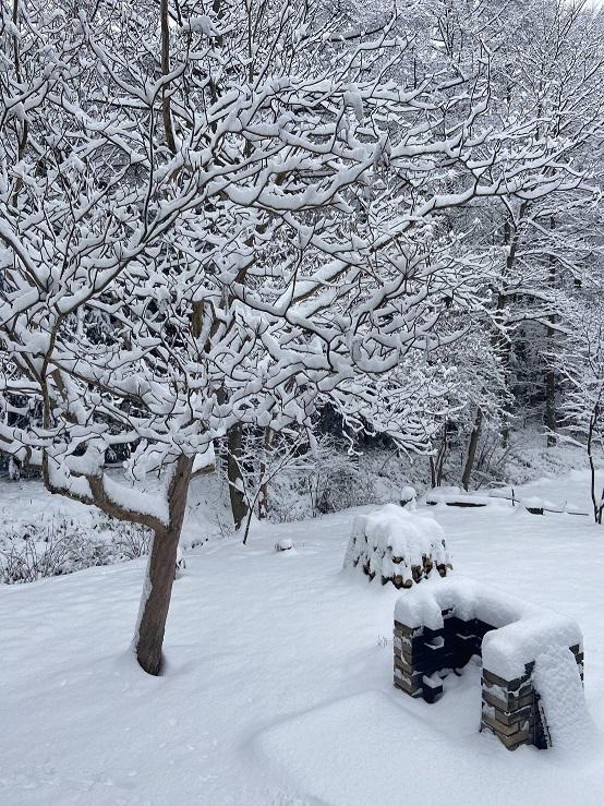 清里の雪.jpg
