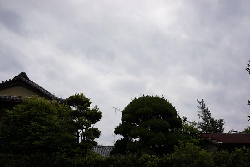 nissyoku12.jpg