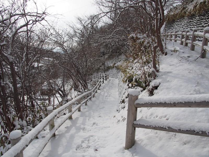 shikanoyu03.jpg