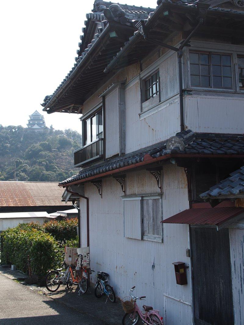 hiwasa02.jpg