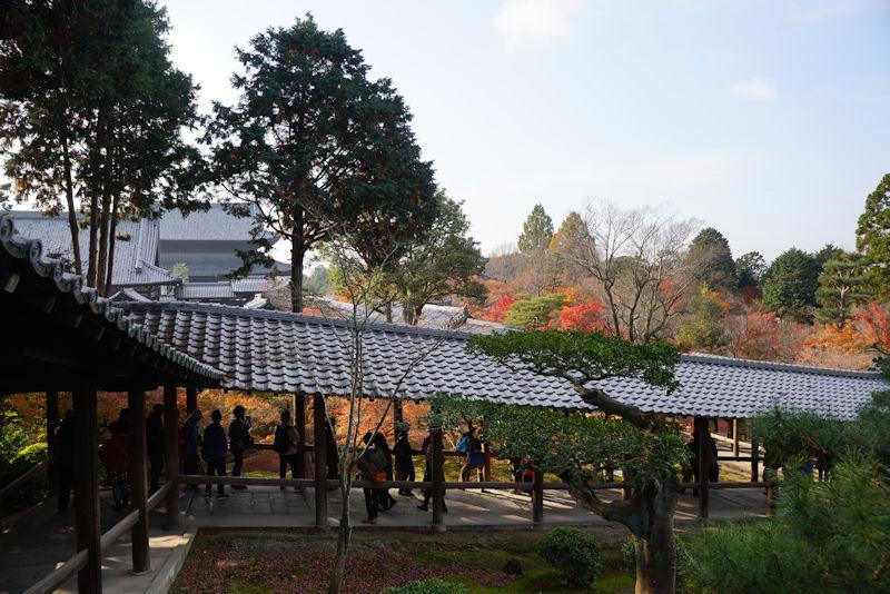 toufukuji04.jpg