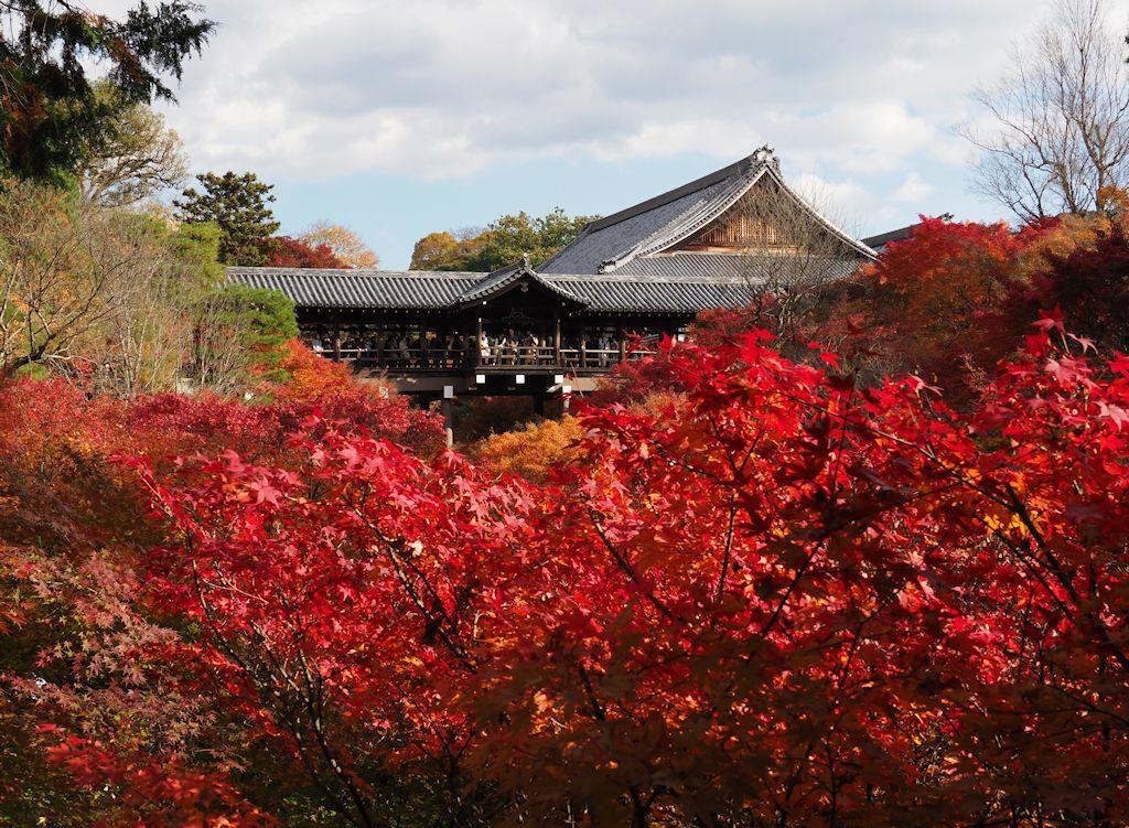 kyoto02.jpg