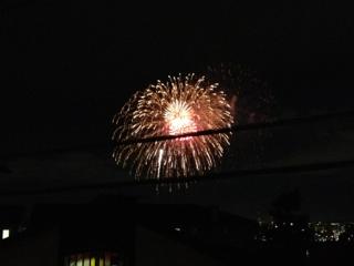 2012多摩川花火1