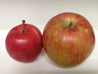 最高りんご1