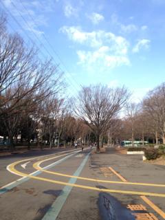駒沢12月