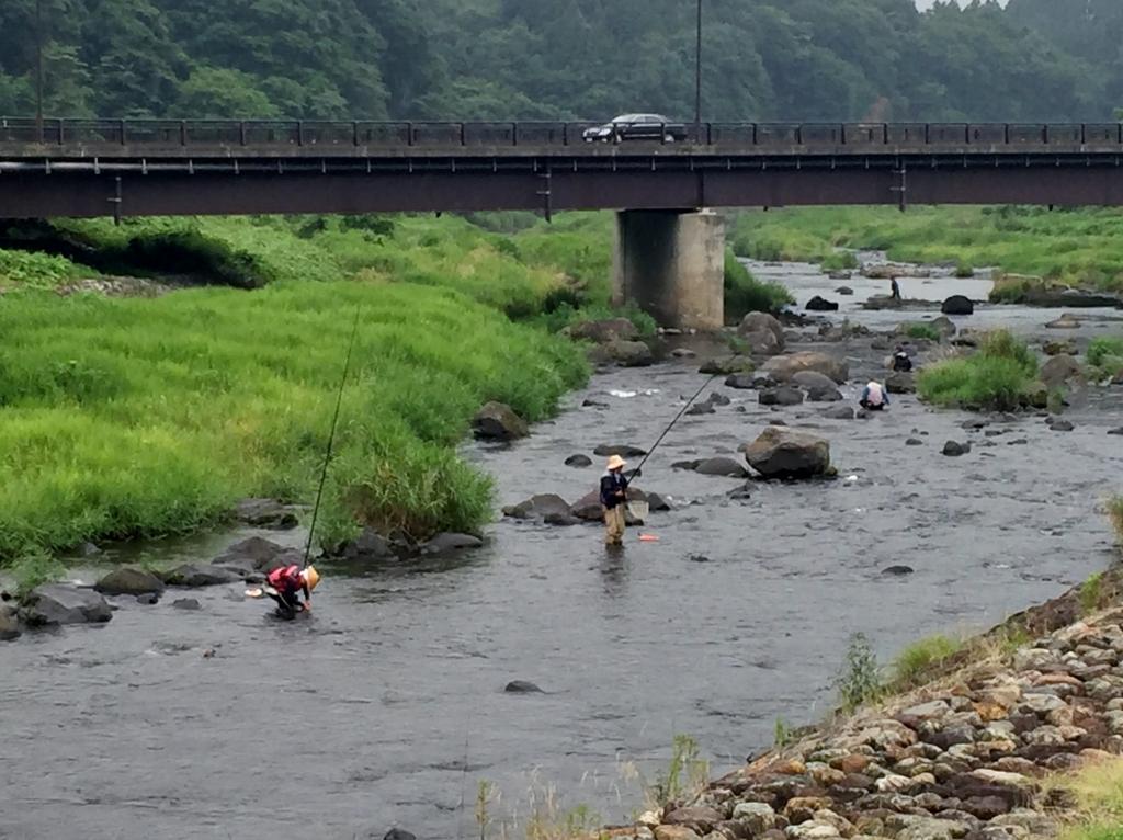 鮎釣り2017 川