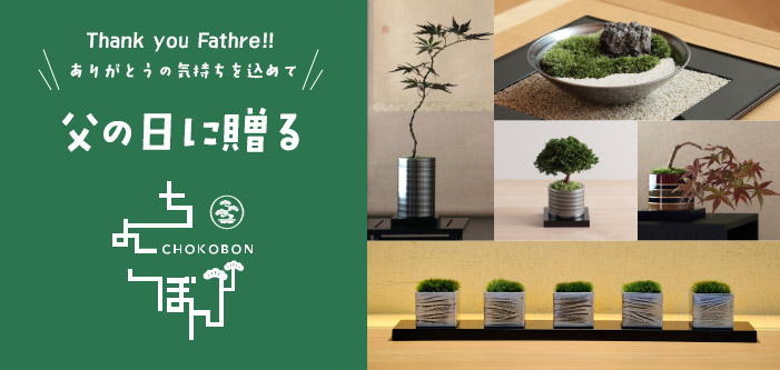 父の日,盆栽