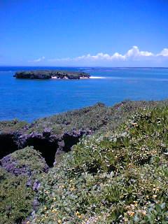 長島から平島を望む