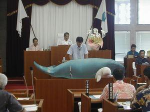 名護市議会、東恩納琢磨議員のじゅごんを持ち込んでの初の一般質問