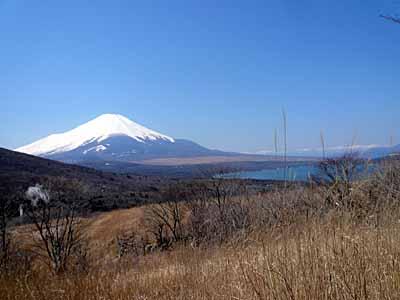 富士山と山中湖.jpg